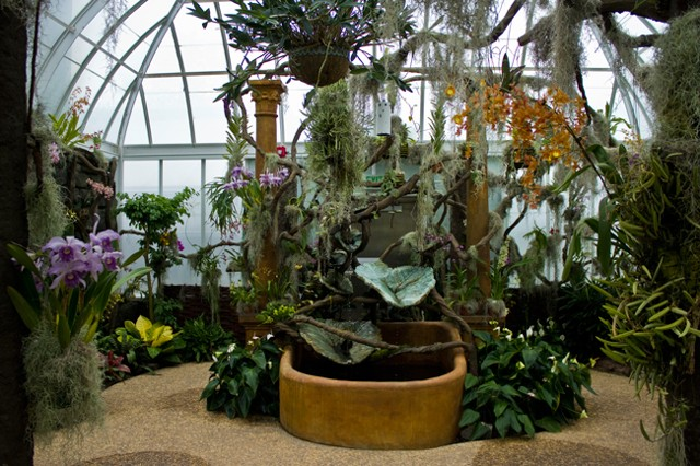 Orchid Range, Orchid Whimsy Greenhouse; Duke Farms