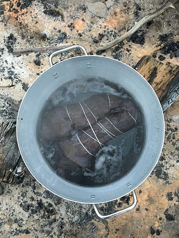 Natural dyeing with native Australian plants