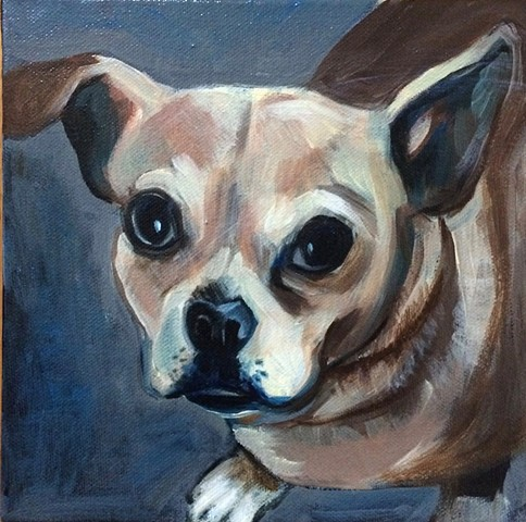 oil portrait of chihuahua on canvas