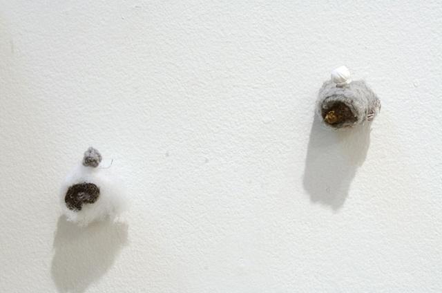 Snout Cluster (detail)