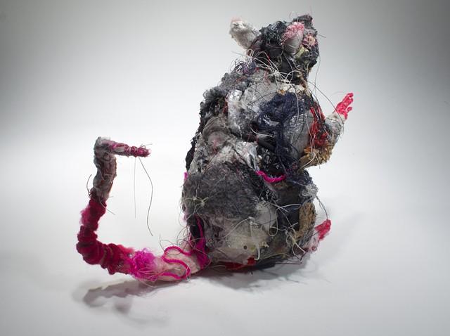 Rat #3