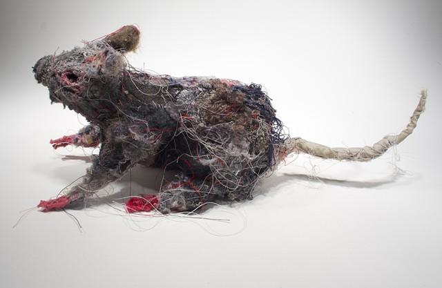 Rat #2