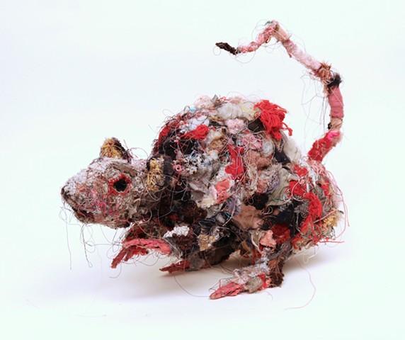 Rat #15