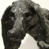 tar pup #2 (hound)