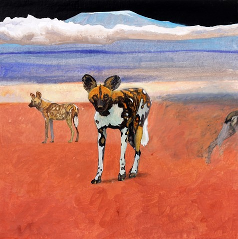 """African Wild Dogs"" (766)"