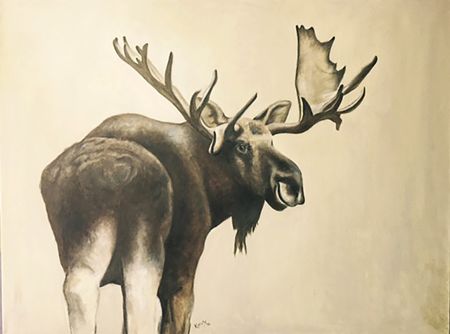 Painting of bull moose by Kandy Stern.