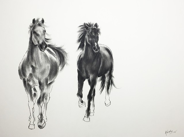 Charcoal drawing of two running horses by Kandy Stern.