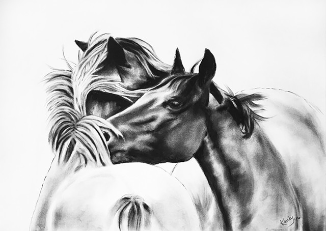 Charcoal drawing of two horses grooming by Kandy Stern.