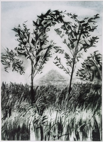 A Polymer photogravure intaglio print of a charcoal drawing that shows the edge of a woodlot at McCanna House in North Dakota.
