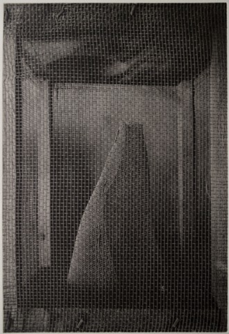 A home-made fly trap made of wood and screen. Polymer photogravure print printed on an intaglio press in one color.