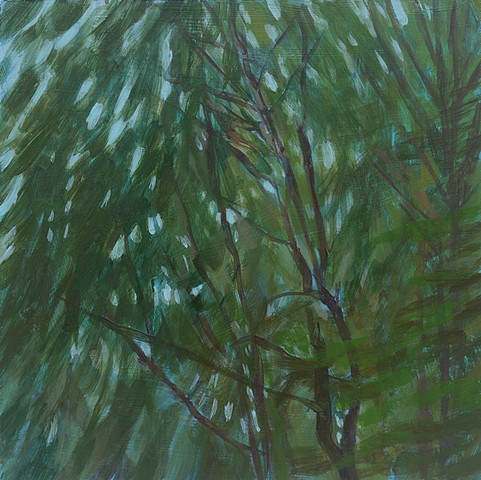 Feathery Light Through Trees small affordable landscape plein air contemporary abstract painting