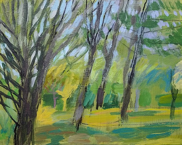 Landscape Study, Trees -- Brian's Back Yard, NH