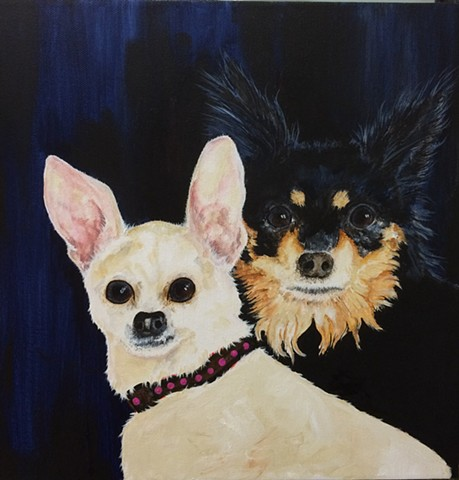 Chihuahua Commission