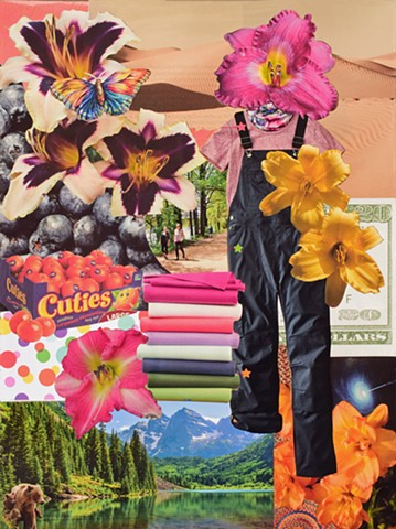 collage on paper desert sand twenty dollar bills lillies brown bears forest water mountains stars by Holly Campbell