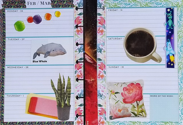 mixed-media collage on paper with a cup of coffee pink flower pillow whale pillow planner pages, snake plant by Holly Campbell