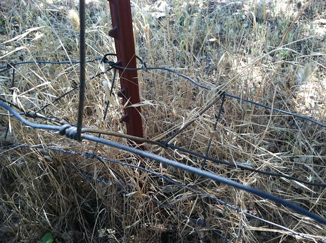 Placerville Fence