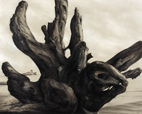 Realistic landscape beach driftwood drawing Terry Nelson