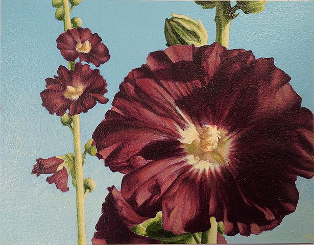 Acrylic painting of close-up of black hollyhock flowers