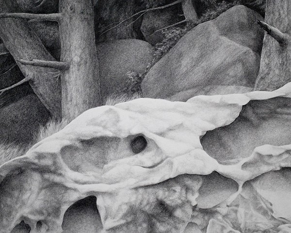 Charcoal drawing of weathered honeycomb sandstone with trees