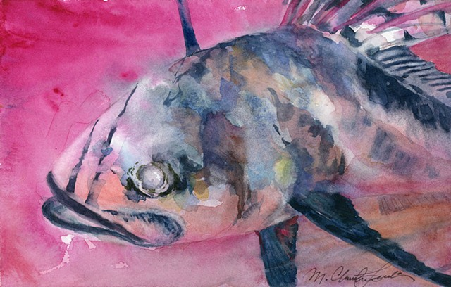 Roosterfish watercolor painting in moody pink and black color scheme by M. Christine Landis