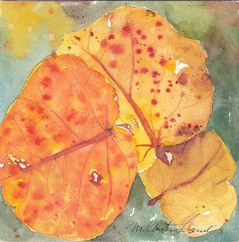 watercolor painting of sea grape leaves in fall color by M Christine Landis