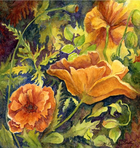 watercolor painting of orange poppies by M Christine Landis