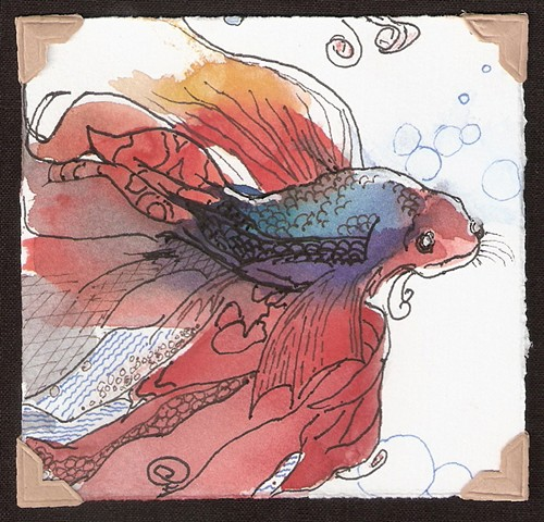 watercolor and ink painting of a red and blue beta fish by M Christine Landis