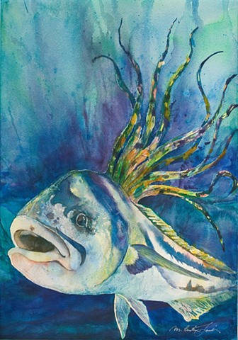 watercolor painting of a rooster fish by M. Christine Landis