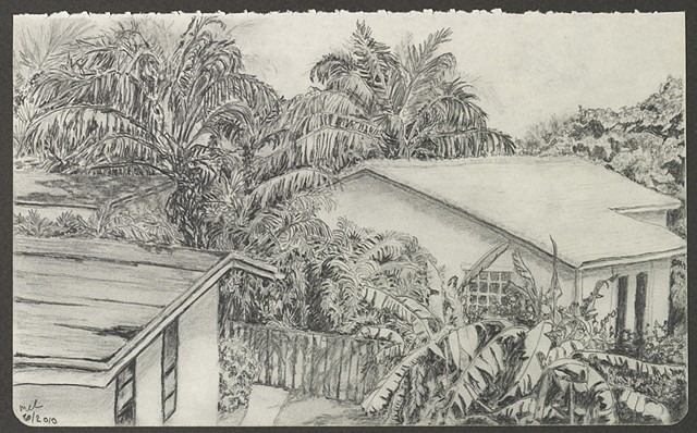 graphite pencil drawing of rooftops and tropical foliage by M Christine Landis