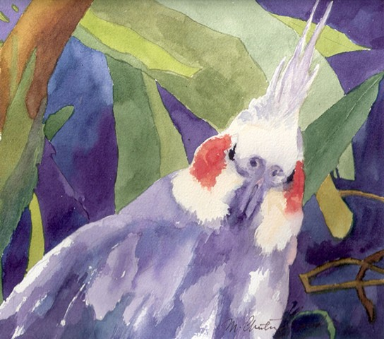 watercolor painting of cockatiel in tropical foliage at Brevard County Zoo by M Christine Landis