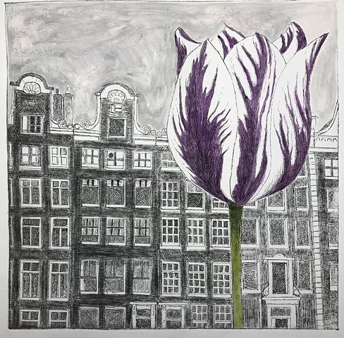 Amsterdam: an etching of canal houses with a large tulip in the foreground, by Carole Winters.