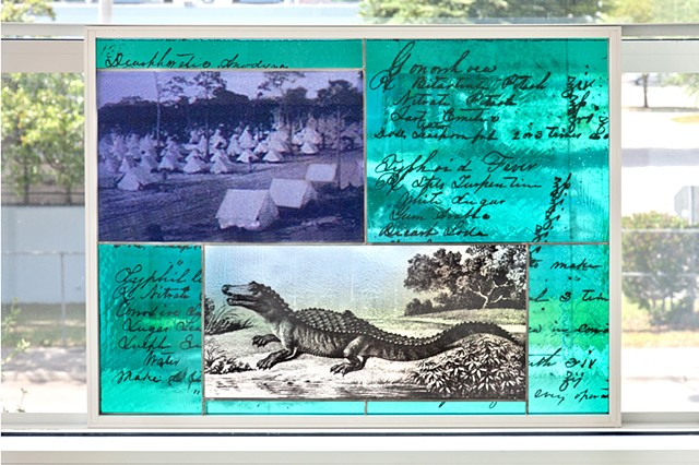 Background of prescriptions for typhoid fever, syphilis, and gonorrhea, from a medical student's notebook from the 1850s   Camp Miami during Spanish American War, drawing of Alligator by William Bartram   Photo by Robin Hill
