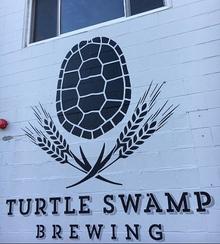 Image result for turtle swamp brewing