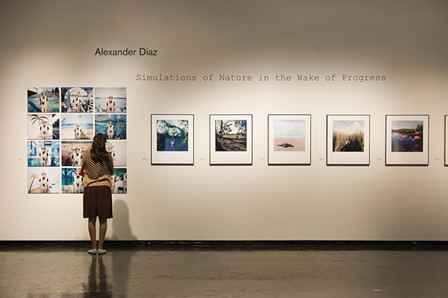 Installation view at the University Gallery, Gainesville, FL