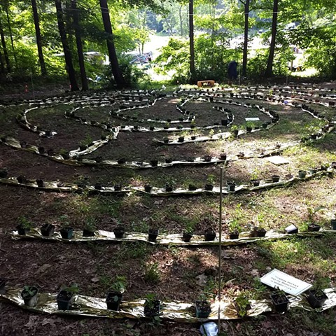 Herb Labyrinth by Liz Wagner