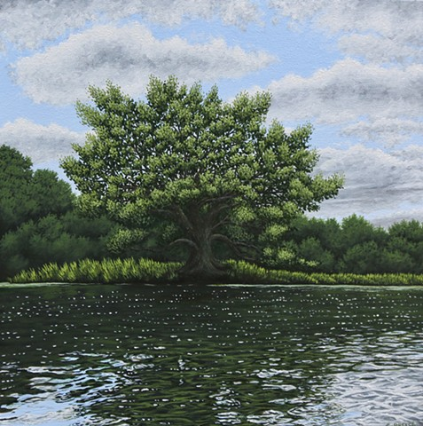 Christina Preece Canadian landscape artist art Grand River