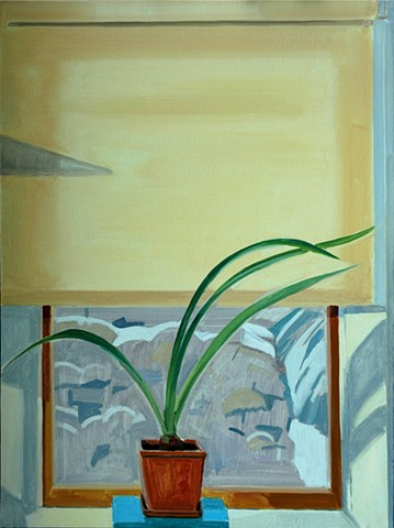 Thin Winter Light w/ Amaryllis