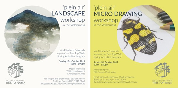 plein air, workshops, landscape, wilderness, australia, micro drawing, drawing, watercolour, watercolour painting