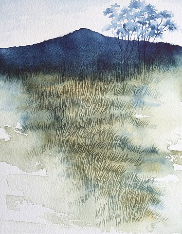 watercolour painting, landscapes, western australia, australianartist, wilderness, trees