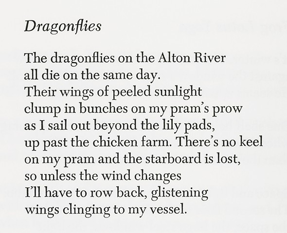 First stanza of 'Dragonflies'