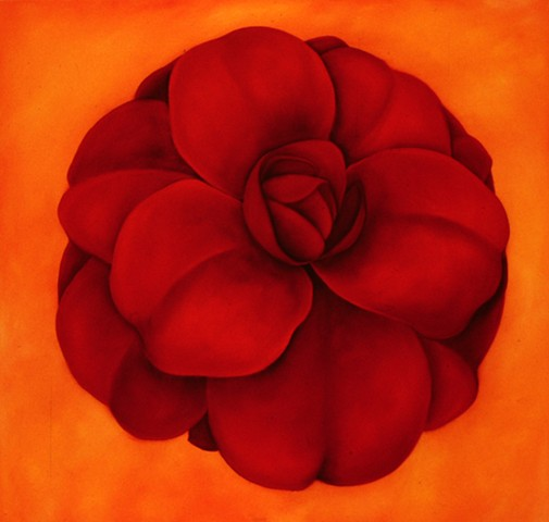Red Rose on Orange