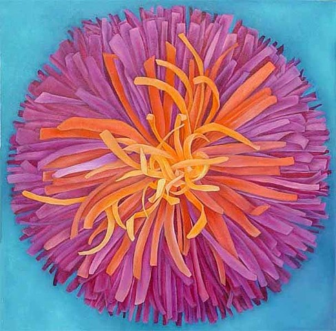 Magenta Aster on Blue