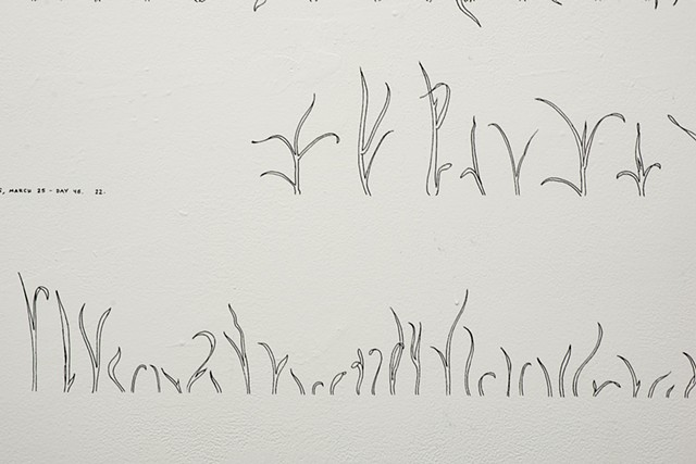 growing gestures (detail)