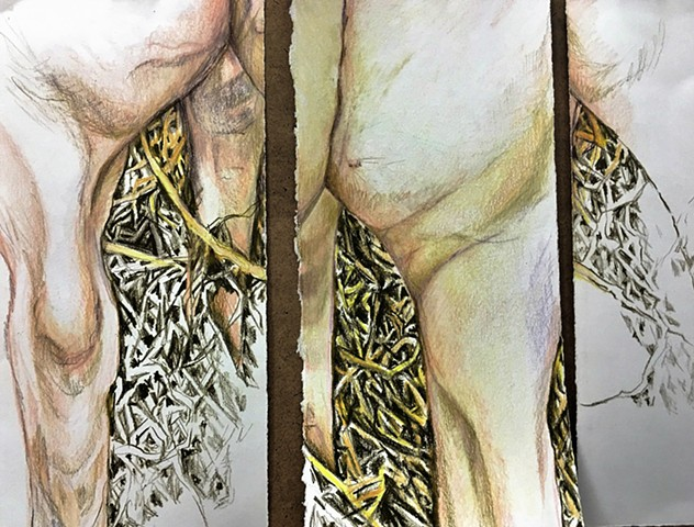 Colored Pencil Triptych Drawing on Paper