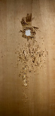 Plywood panel with ballistic damage