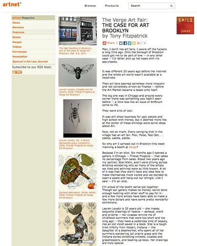 Verge Art Brooklyn '11, Artnet Article1