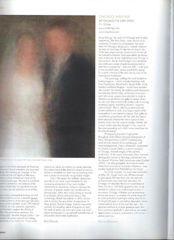 Contemporary Magazine, Stray Show Review