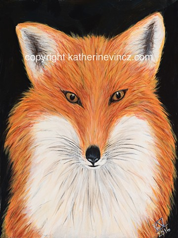 fox art, red fox, winsome fox, beautiful fox art, fox face, fox pointy nose