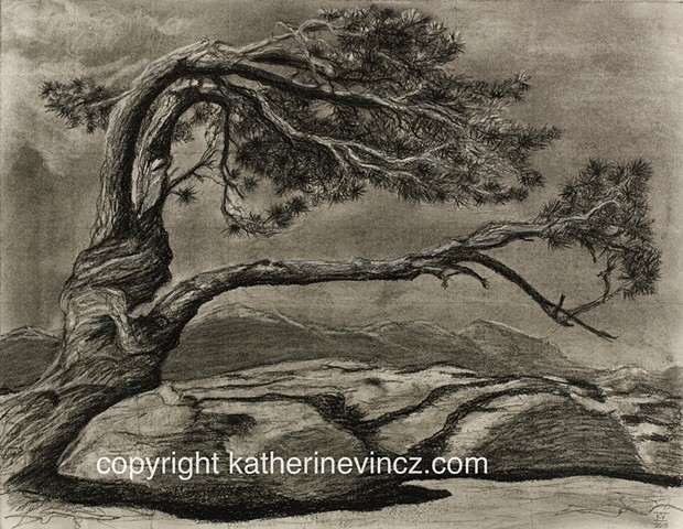twisted tree, desert, mountains, Ansel Adams, charcoal, mountains