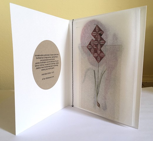 """Botanical Collages"" Artist Book"